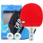 友谊729 2010乒乓球成品拍双面反胶 送拍套 球